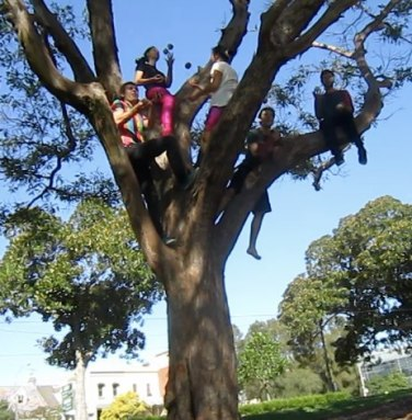 GALLERY - SCAVENGER HUNT 2013 - 3. Juggling in a tree