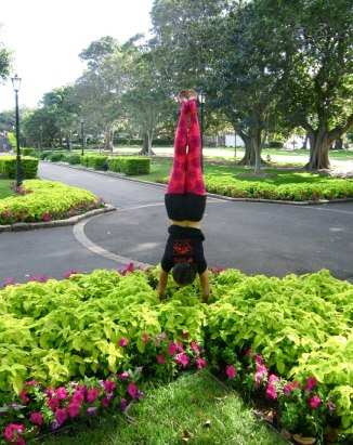 GALLERY - SCAVENGER HUNT 2013 - 37. Handstand in flowers